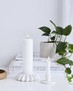 Pipanella Candlestick Lines Flower White